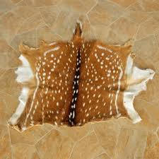 axis deer hide taxidermy skin 13017 for the taxidermy