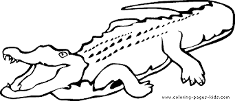 Small Picture Black And White Crocodile Coloring Coloring Pages