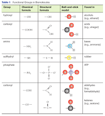 functional groups chart functional groups sbi4u resource website
