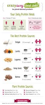 My Crazy Sexy Guide To Plant Based Protein