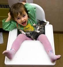 Кошки и дети воспитание царапками воспитание ребенка кошки не  Воспитание царапками