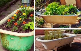 building raised garden beds with