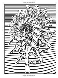 Small Picture Impressive Idea Fractal Coloring Book Fractal Coloring Pages 224