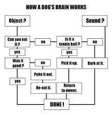 Psychology Flow Chart A Nother Final Flow Chart Example Social Psychology