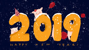 Year 2019 - Year of Earth Pig HD Wallpaper