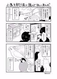 Twitterに投稿された小鳥を飼う前に読んで欲しい漫画が話題に 不幸な