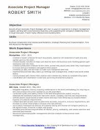 Sample It Project Manager Resumes Associate Project Manager Resume Samples Qwikresume