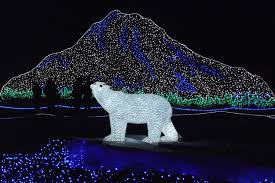Owen Sound Festival Of Lights 2018 Zoolights Tacoma At Point Defiance Zoo