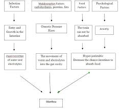 Pathophysiology Of Diarrhoea In Flow Chart Pathophysiology Of Dysentery