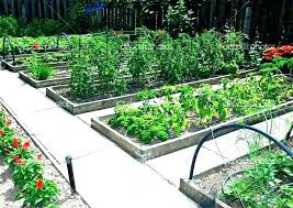 Garden Layout Template How To Make A Vegetable Garden Vegetable Garden Layout