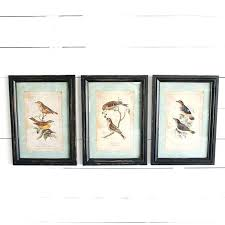 framed wall art set of 3 woodland bird umbra mapster
