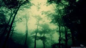 dark forest wallpaper 1920x1080. Plain 1920x1080 Dark Forest Wallpapers1920x1080  In Dark Forest Wallpaper 1920x1080 A