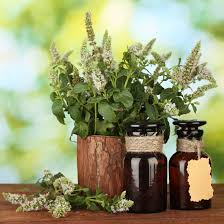 The History of Herbal Medicine and Essential Oils - Mind And Body - Utne  Reader