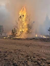 Bootleg Fire burning in Southern Oregon ...