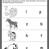 Zoo Math Worksheets   worksheet ex le likewise 97 FREE ESL zoo worksheets likewise Dot to Dot Zoo  5's   Zoos  Giraffe and Worksheets moreover  together with  moreover  likewise zoo worksheets   ANIMALS WORKSHEETS read and colour   английский together with  further free printable zoo animal worksheet for kinderg   Criabooks in addition 34 best Pre K Zoo Theme Crafts Worksheets images on Pinterest additionally Dot to Dot Zoo  5's   Worksheet   Education. on printable zoo math worksheets