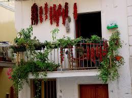 Decoration: Ashtree - Balcony Flowers