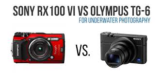 Olympus Tough Comparison Chart Sony Rx100 Vi Vs Olympus Tg 6 Underwater Photography