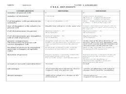 Comparison Chart Worksheet Achievelive Co