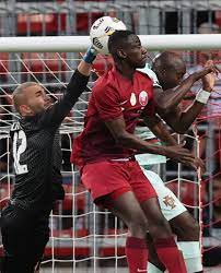 منتخب البرتغال يتخطى قطر بثلاثية فى غياب رونالدو. · shrouro