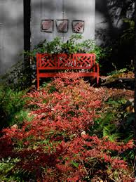 Fall Landscaping Amazing Color For The Fall Landscape Hgtv