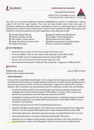 Resume Portfolio Examples Awesome Team Leader Resume Free Template Sample Management Resume Lovely