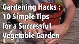 Gardening Hacks - 10 Simple Tips for a Successful Vegetable Garden ...