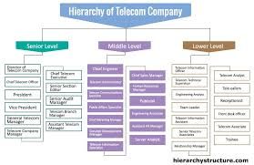 Accounting Position Hierarchy Chart Hierarchy Of Telecom Company Chief Executive Management