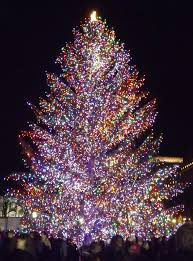 christmas tree lighting ideas. Lighting Outdoor Trees. Christmas Tree Imanada Photos Of Lights Images Fleur De Lis Home Ideas A