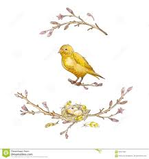Yellow Bird Design Wreath Of Hand Drawn Watercolor Cherry Branch With Yellow