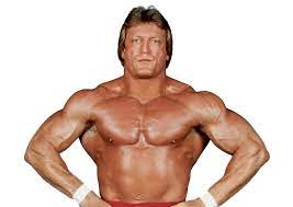 Where is Paul Orndorff now?