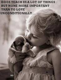 Love Animals Quotes Amazing Love Animals Quotes For You Best Quotes Everydays