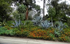 san go botanic garden part 1