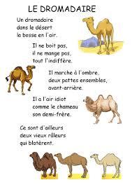 Comptines Et Chanson De Chameaux Maitresse Myriam Dessin De Chameau Et Dromadaire L