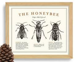 beehive art etsy