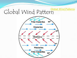 Global Wind Patterns Adorable Wind Ppt Download