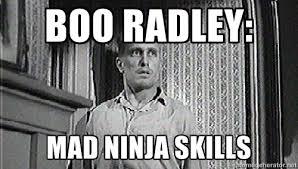 Boo Radley: Mad ninja skills - boo radley | Meme Generator via Relatably.com