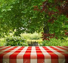 Picnic Template Picnic Table Template In Garden Stock Photo Picture And Royalty