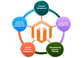 Enterprise Resource Planning Magento 2 Erp Integration