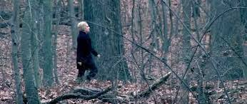 Hillary woods Blank Template - Imgflip