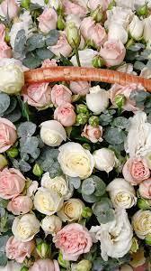 Single White Rose Wallpaper (Page 1 ...