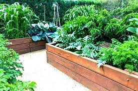 raised garden planter lovely bed kit cedar costco gronomics awesome great gard