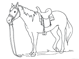 Wild Horse Coloring Pages To Print Coloring Page Horse Coloring