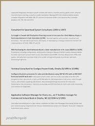 Sample Resume For Car Salesman Mesmerizing Resume Examples For Car Sales Fresh Resume Sales Objectives Car