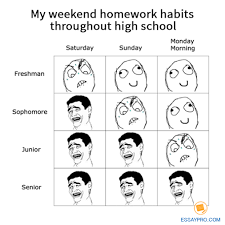 Best Memes About My Homework   My Homework Memes SP ZOZ   ukowo Why why i didnt do my homework I Didnt Do My Homework Jokes i jokes my didnt  why do My cat was in there because all the small fish that I catch