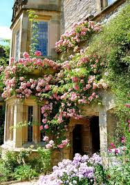 Small Picture 264 best Landscape images on Pinterest Landscaping Formal