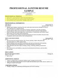Sample Profiles For Resumes Adorable Professional Profile Examples Musiccityspiritsandcocktail
