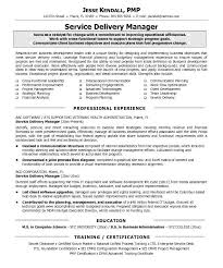 Stylist Ideas It Manager Resume Sample 9 Best - Resume Example