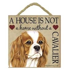 cavalier king charles gift plaque house is not a home hang it