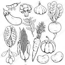 Tranh tô màu các loại rau củ quả đơn giản, đẹp nhất cho bé yêu