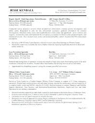 View Sample Federal Style Resume Pdf Free Download Federal